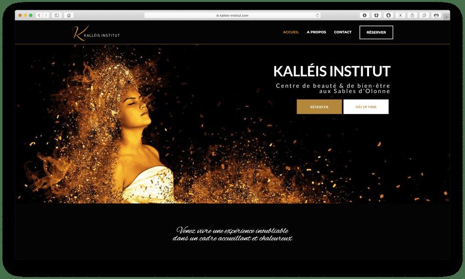 kalleis institut portfolio bldwebagency agence web